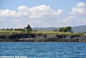 Old ruins on the uninhabited Castle Island in Roaringwater Bay in West Cork