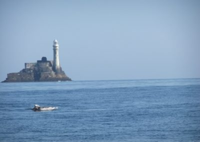 Rissos dolphin near Fastnet Rock Lighthouse