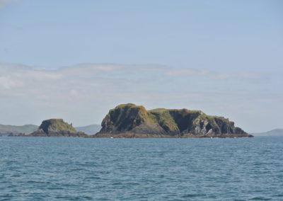 Kedge Island