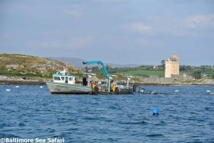 Tending mussel lines near Jeremy Irons Castle in Roaringwater Bay, west Cork