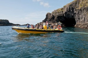 Coastal sightseeing boat trips with whale, dolphin and wildlife watching in West Cork