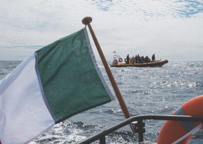 Baltimore Sea Safari's boat Seafari 1 dolphin watching, photo from Seafari Too!